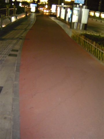 xiamen-bicycle.lane.jpg