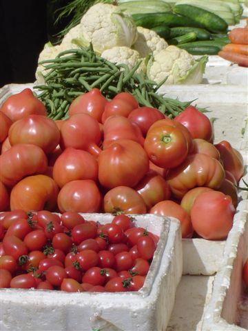 shanghai.beciai-fruits-tomato.jpg