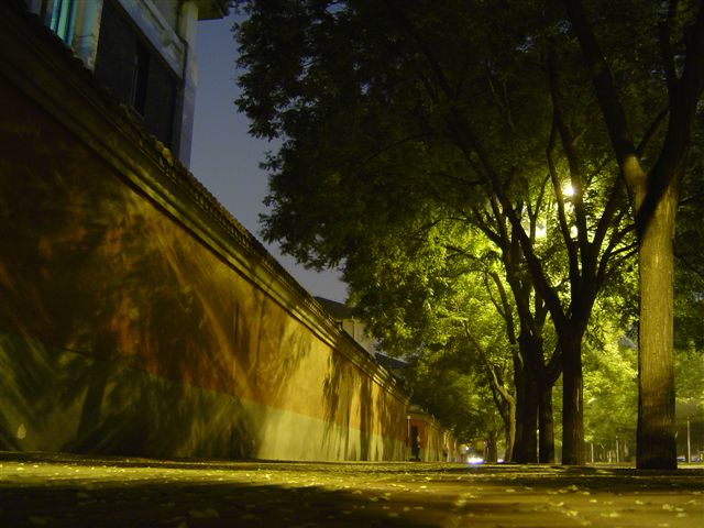 beijing-wall-night.tree.jpg