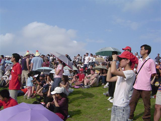 shanghai-grass.stand-watching.jpg