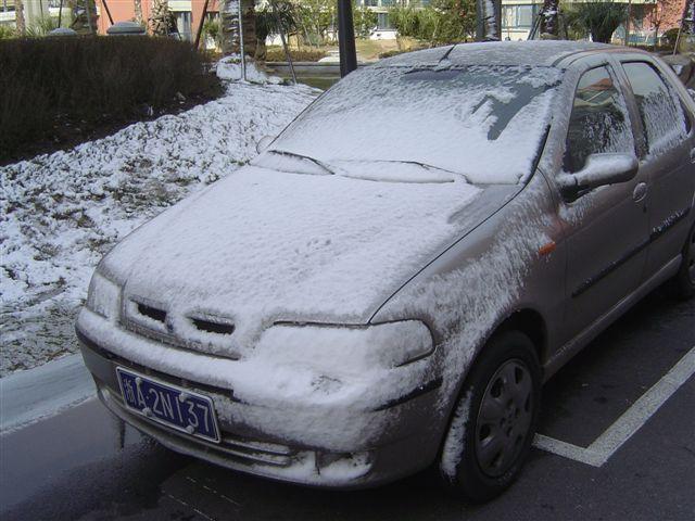 shanghai-goudaner-snow.jpg