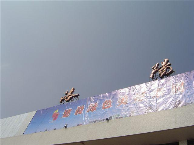 luoyang-jianshuo-phone.jpg