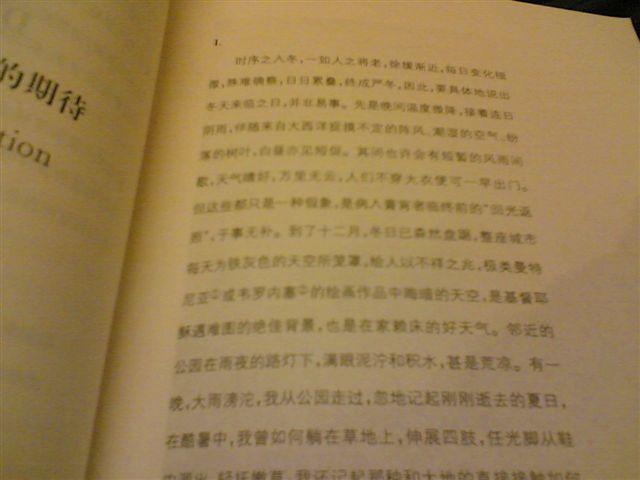 shanghai-book-art.jpg