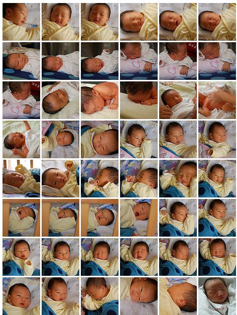 shanghai-baby-galary.png